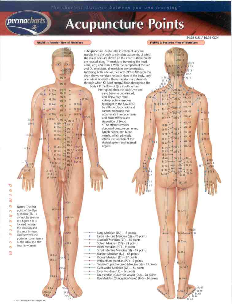 Acupuncture-Points-Chart-1